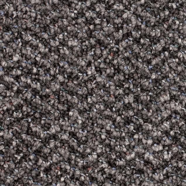 Harry's Carpets - Sentinel Loop Pile Carpet
