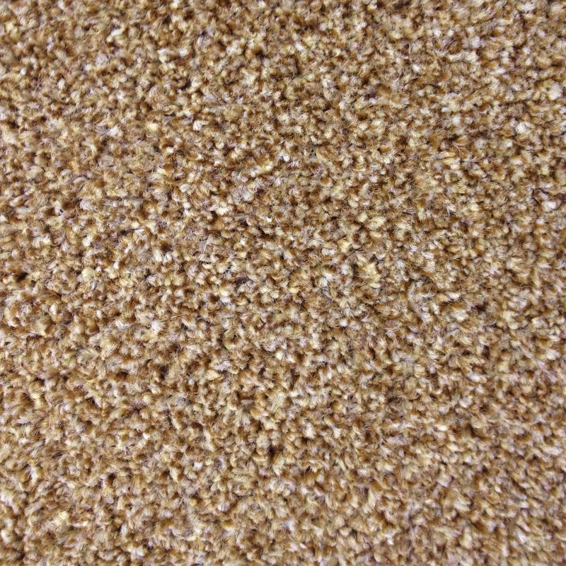 Carpet Rental 28 Images Harry S Carpets Search For