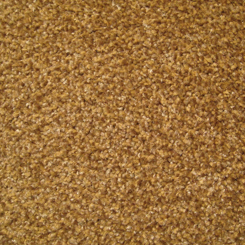 Harry S Carpets Quality Carpet Available At Wholesale Prices